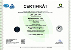 ISO 9001:2009 small